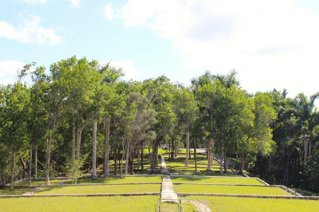 Las Terrazas Cuba coffee plantations